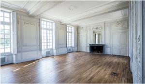 investissement monument historique-pièce de vie appartement ancien vide parquet moulures cheminée plusieurs fenêtres